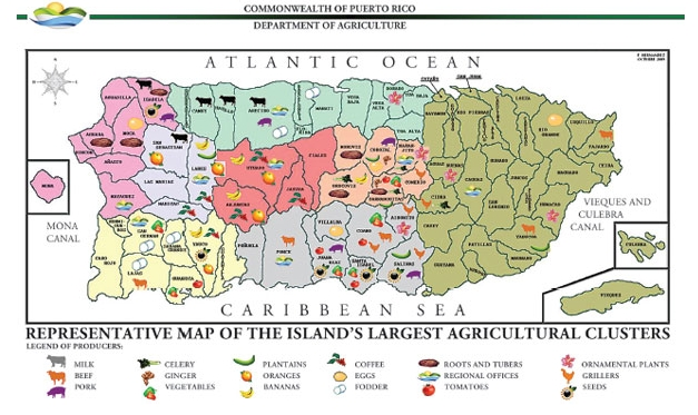 Puerto Rico agricultural clusters